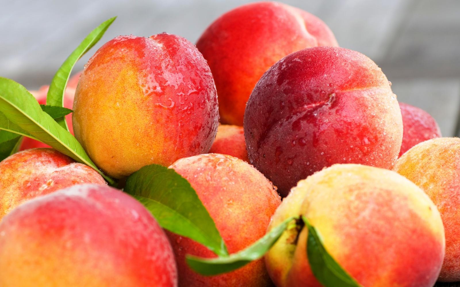 В Брянск пытались провезти около 20 тонн зараженных персиков