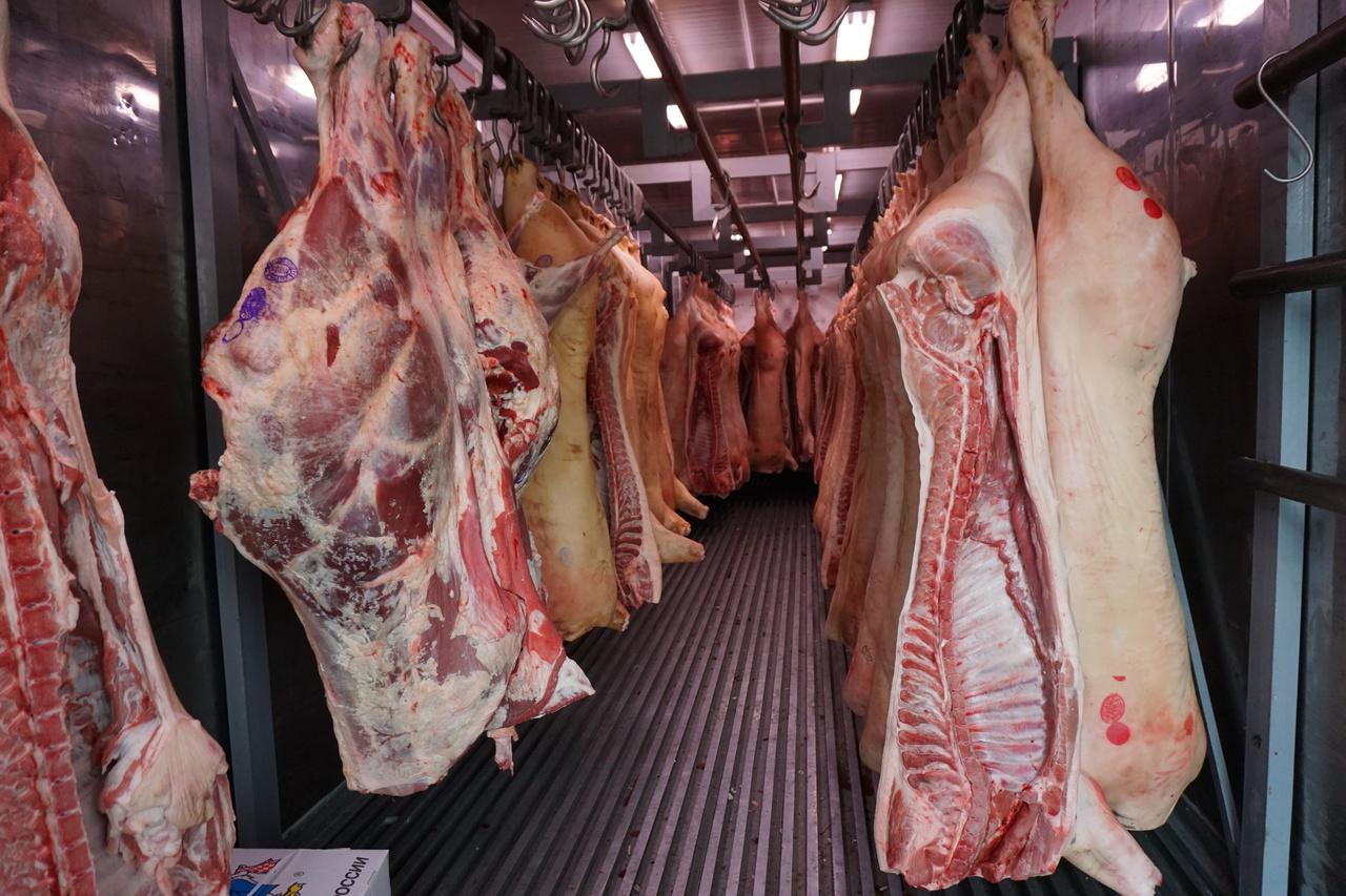 В Брянской области задержали машину с подозрительным мясом