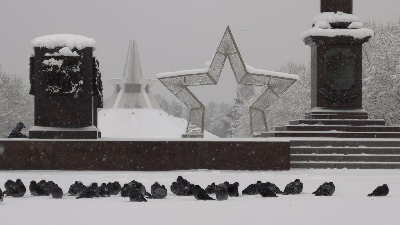 Брянцев восхитили фотографии зимней сказки