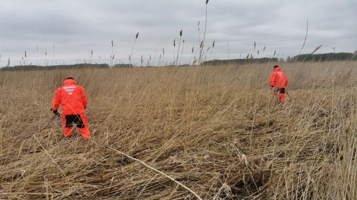 В Навле Брянской области ищут 79-летнего Николая Терехова