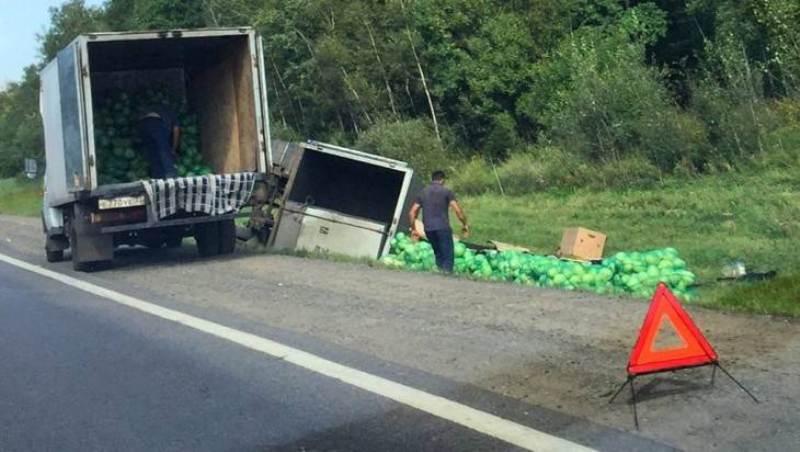 Брянский грузовик с капустой вылетел в кювет