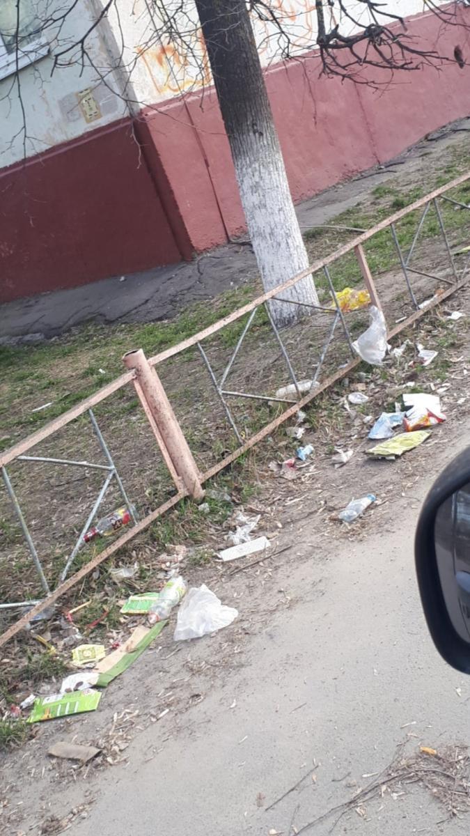 В Брянске Новый городок тонет в мусоре