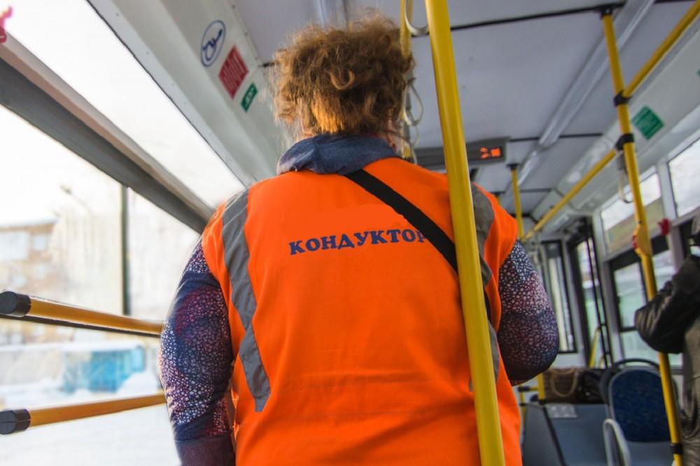 В Брянске извинились перед девочкой, которую кондуктор выпроводил из автобуса