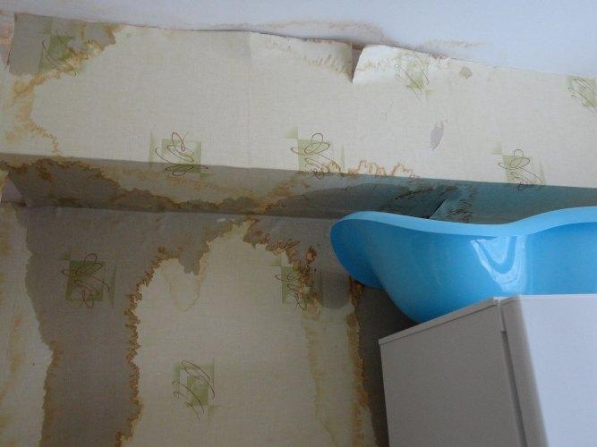 Жительница Брянска живет в затопленной квартире и не может достучаться до местной власти