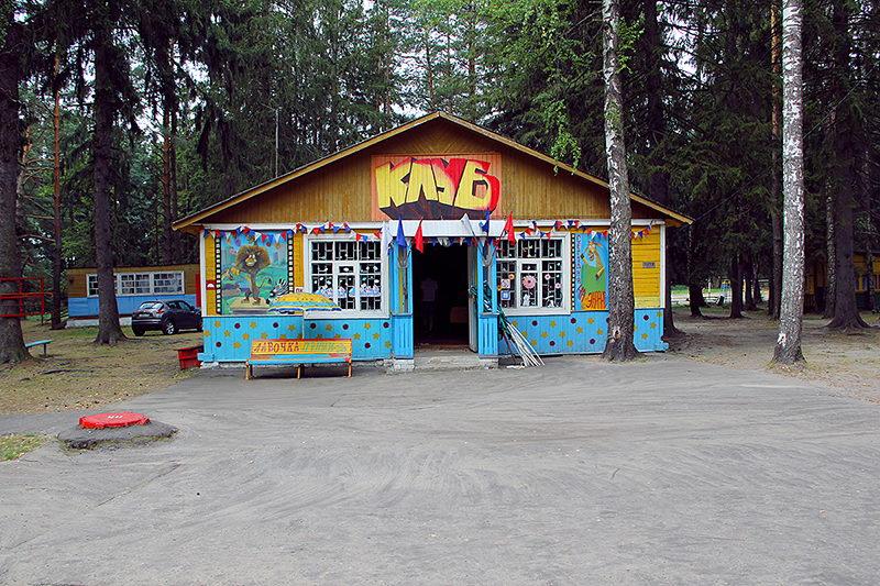 В Брянской области летом откроют 12 детских загородных лагерей и 9 санаториев