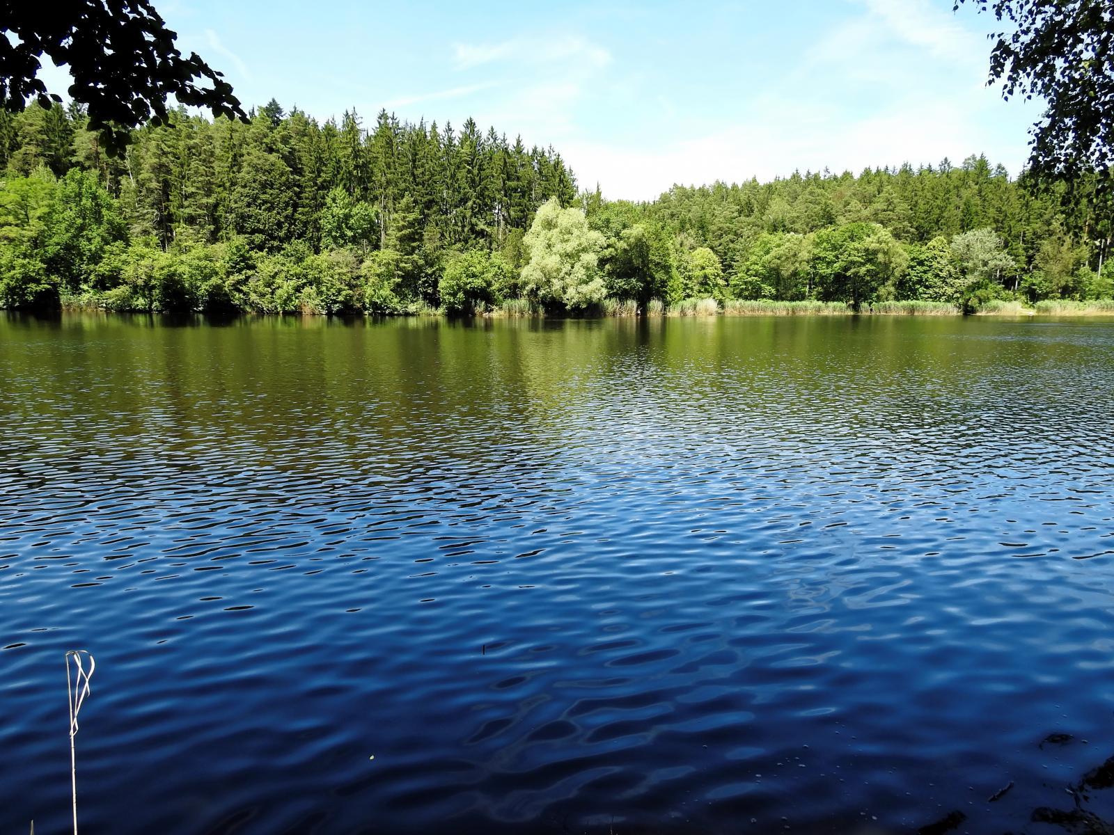 В Клинцах утонул 7-летний мальчик