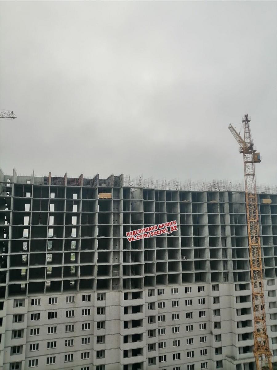 В Брянске спасли застрявшую на 16-м этаже стройки собаку
