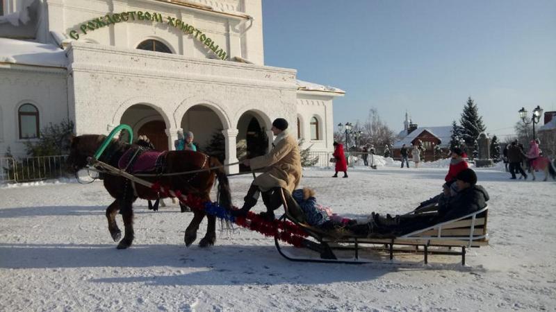 В Брянске 500 детей покатали на лошадях возле Кафедрального собора