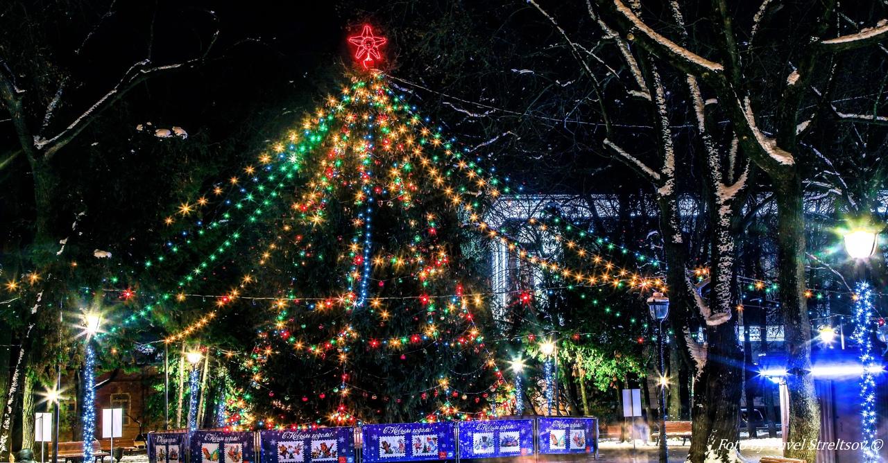 В Брянске сняли на фото красоту главной новогодней елки