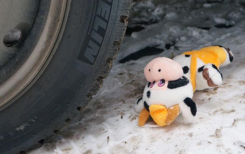 Два ребенка попали под колеса автомобилей в Брянске 20 января