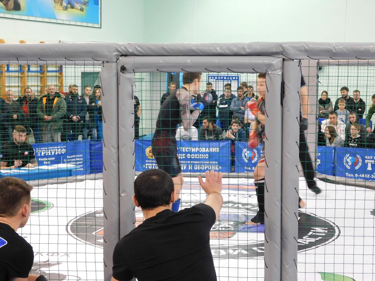 В Фокино прошел чемпионат Брянской области поММА