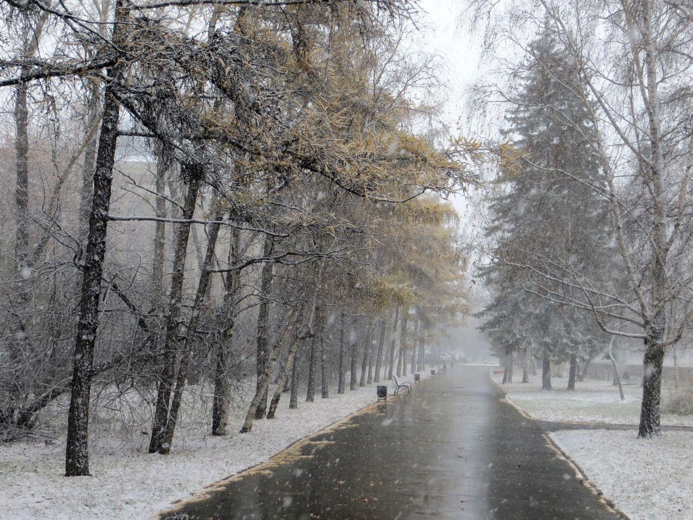 В Брянской области 14 марта выпадет мокрый снег