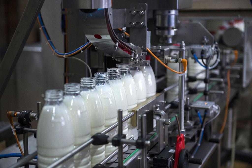 В Брянской области увеличили производство молока