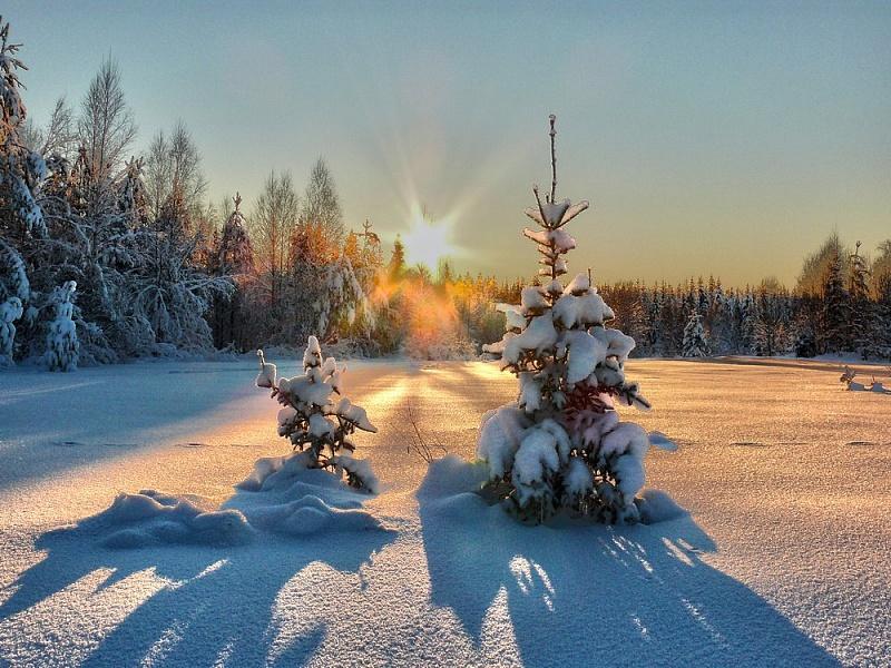 В четверг на Брянщине ожидается небольшой снег и 19 градусов мороза