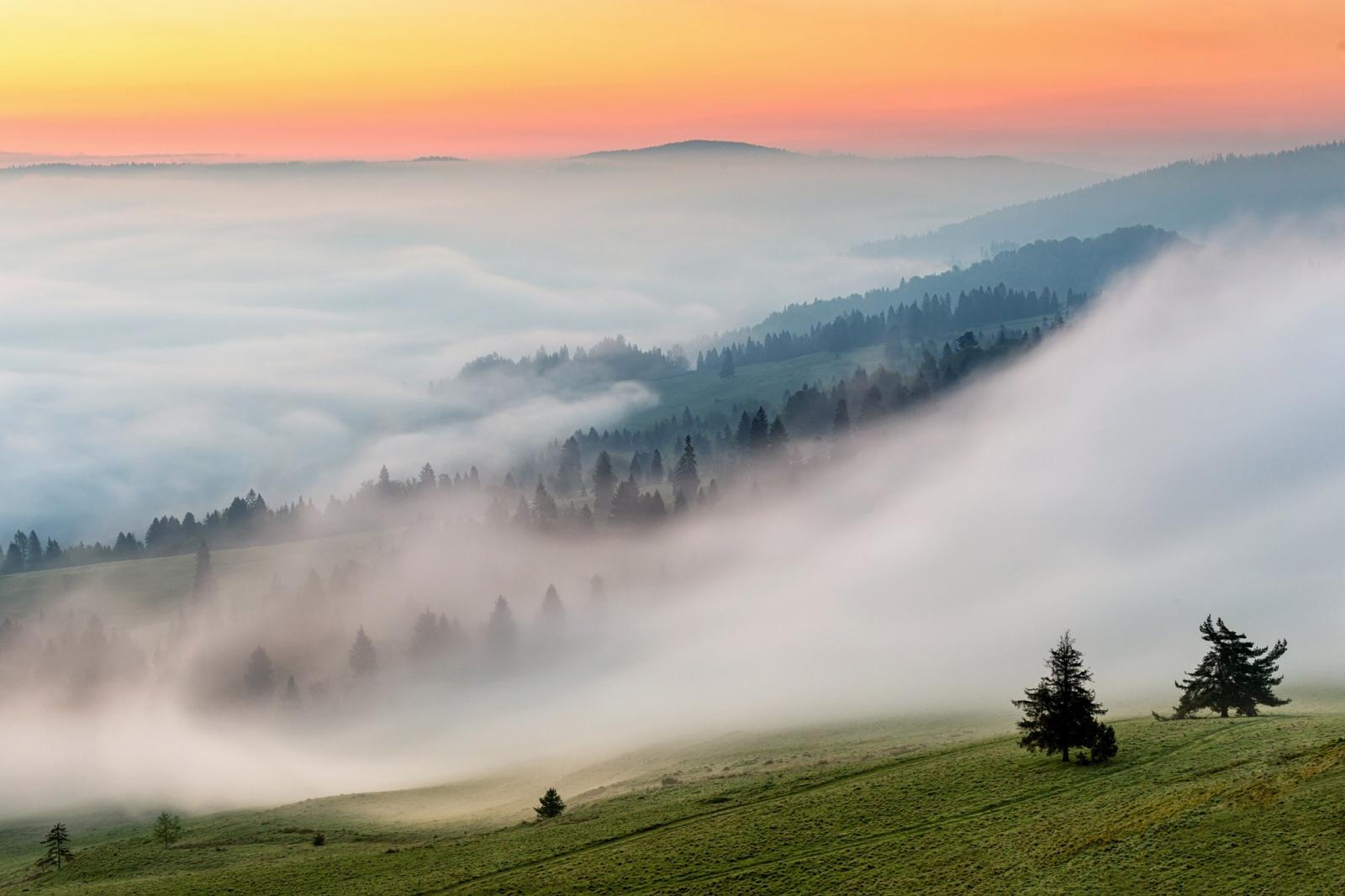 Завтра в Брянске обещают +12ºC и густой туман