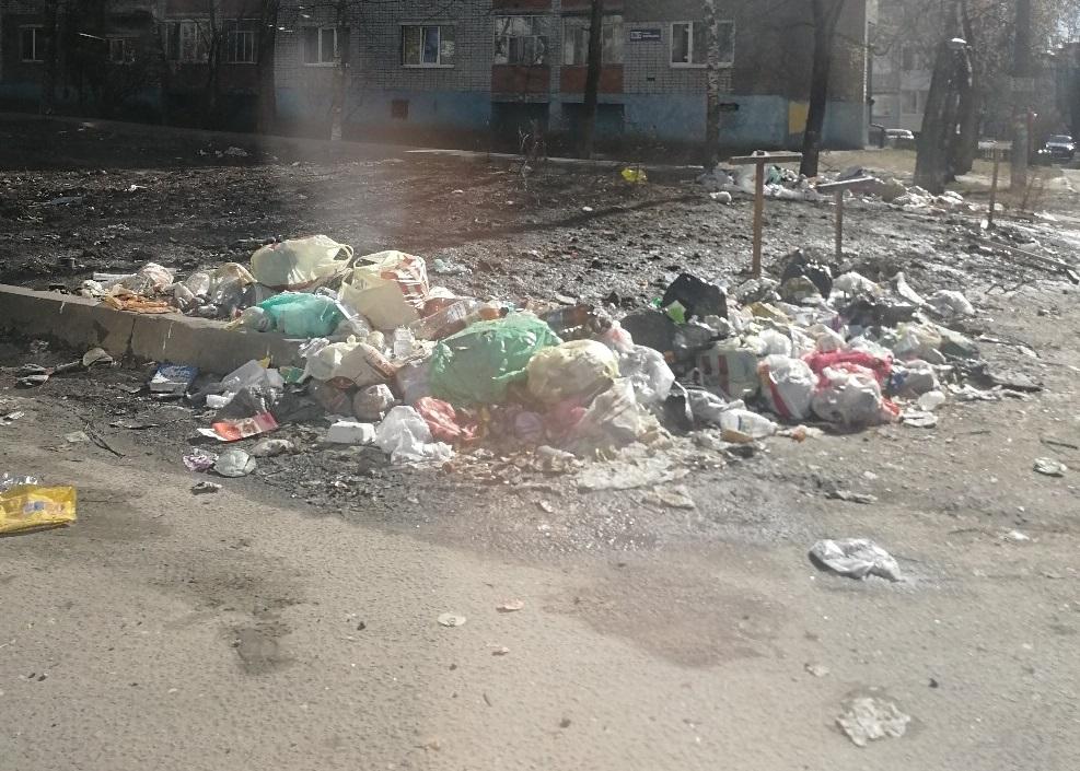 В Брянске на улице Ромашина уберут зловонную свалку