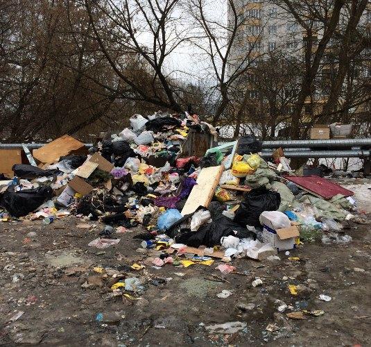 Центр Брянска завален мусором и помоями