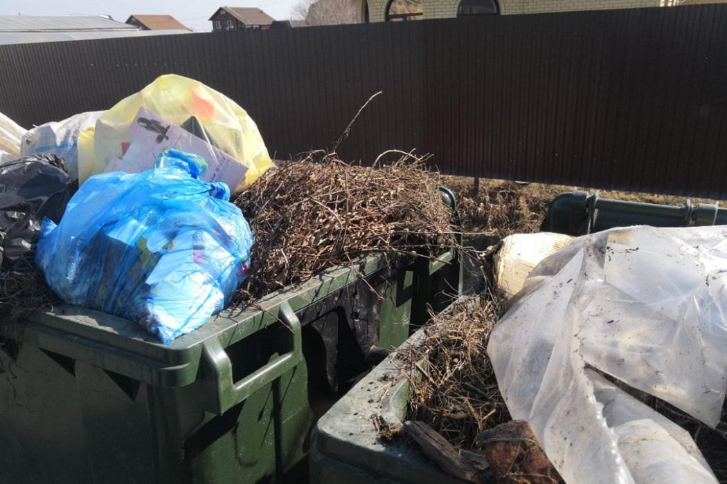 В Брянске дворники стали выбрасывать в мусорные контейнеры растительные отходы