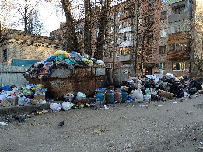 Жители Брянска задыхаются от свалки во дворе