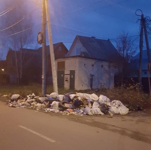 Брянцы выбрасывают мусор на дорогу из-за отсутствия контейнеров