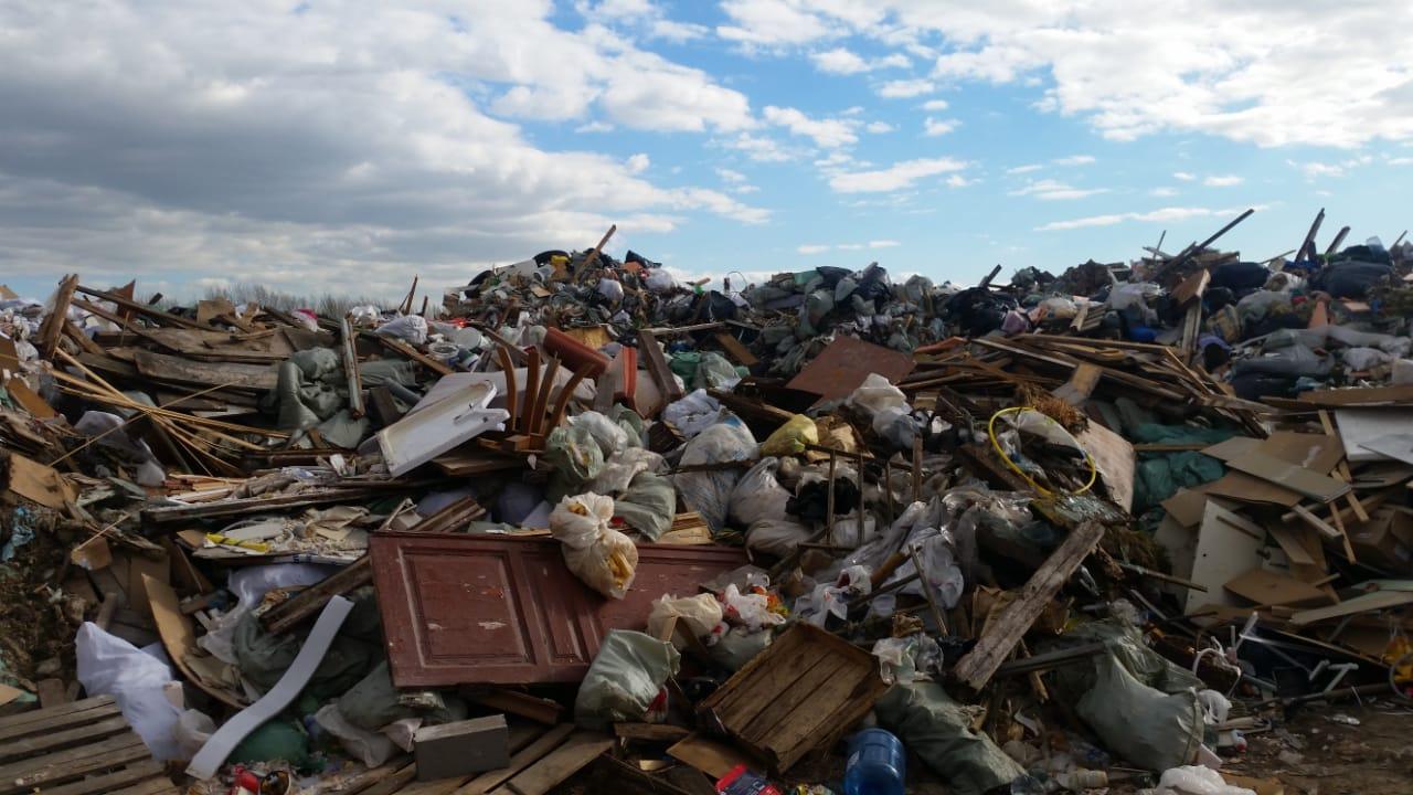 В Брянской области 34 жителя оштрафовали за несанкционированные свалки