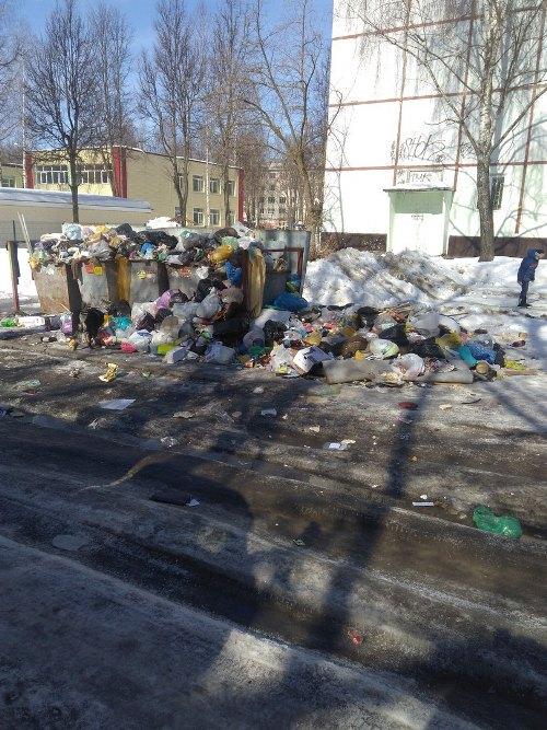 В Советском районе Брянска двор превратили в свалку