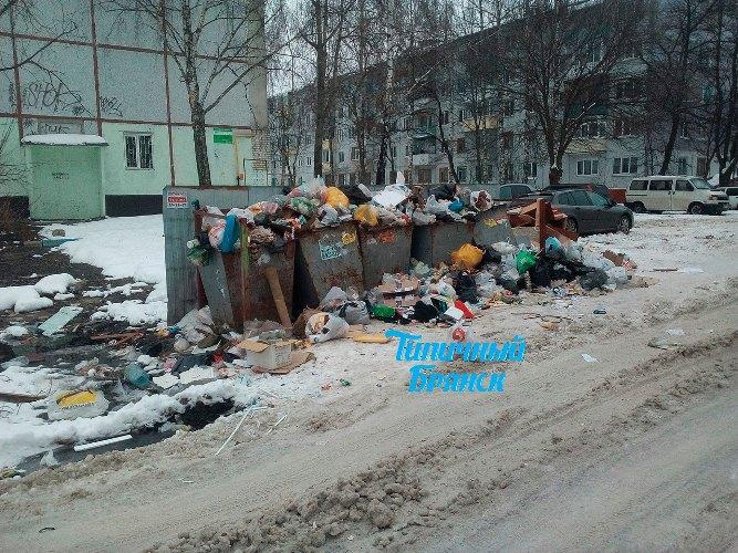 Советский район Брянска превращается в помойку