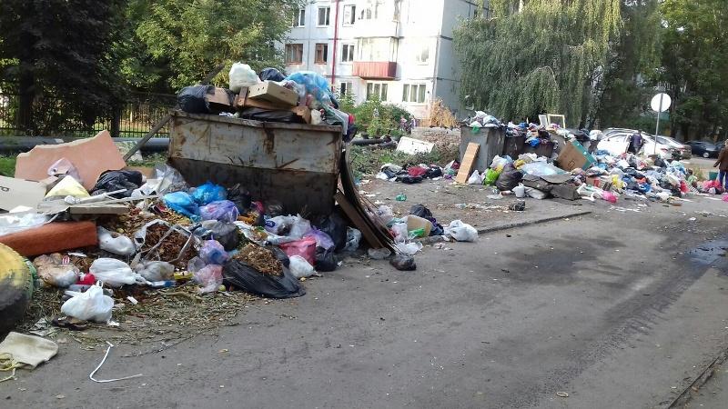 В Брянске невыносимый запах и антисанитария атаковали школу и детский сад