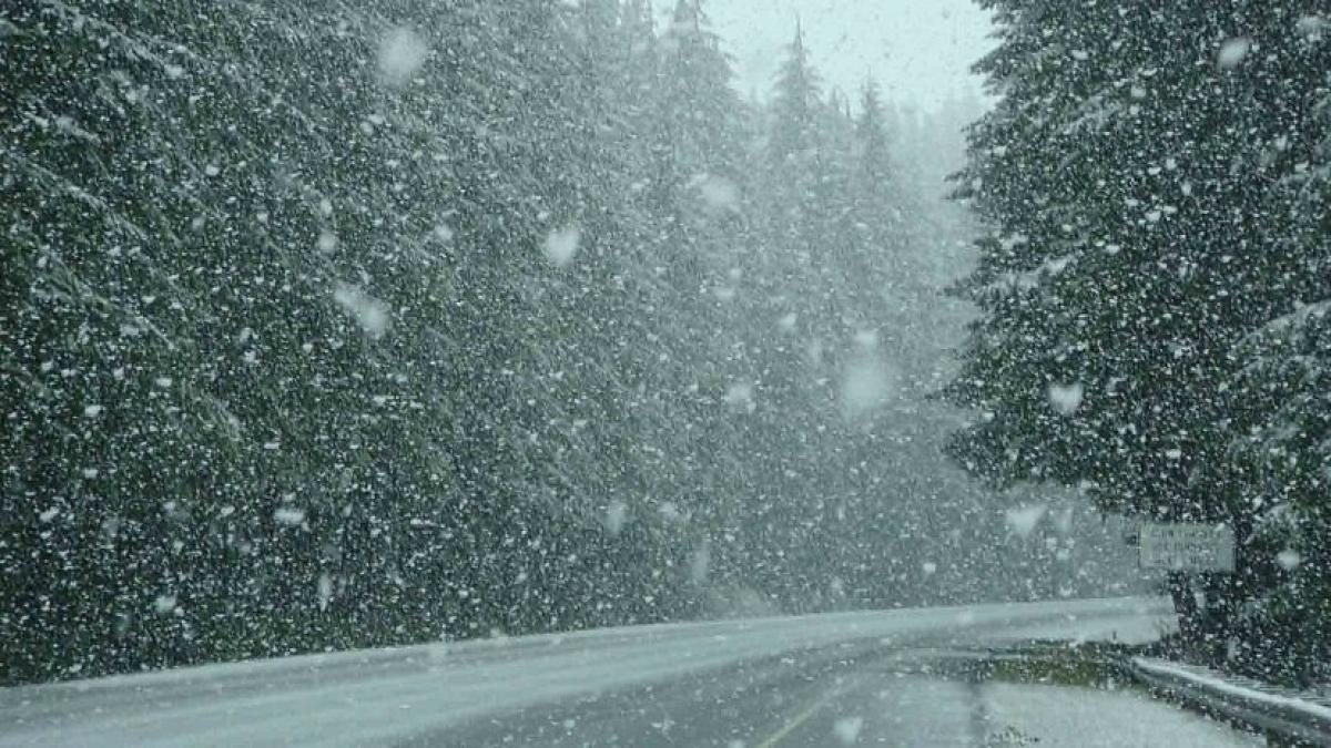 В Брянской области 13 и 14 марта ожидается мокрый снег