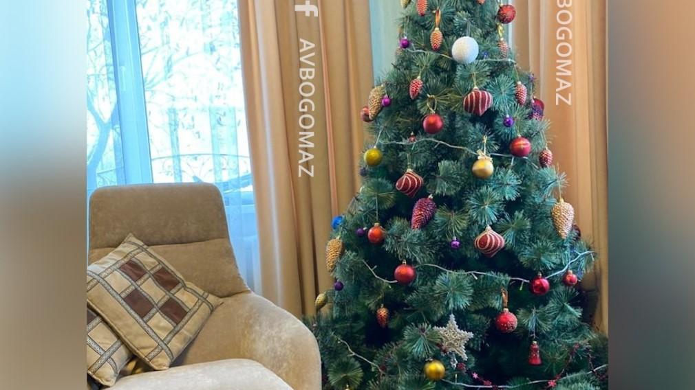 Губернатор Брянской области Богомаз показал наряженную дома елку