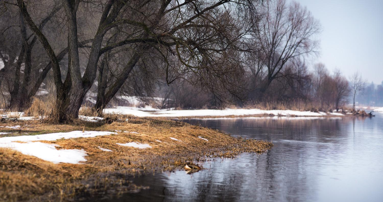 В Брянской области потеплеет до 5 градусов 25 февраля
