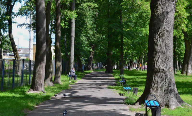 Брянцев 1 мая ждут открытие парков, митинг и эстафета