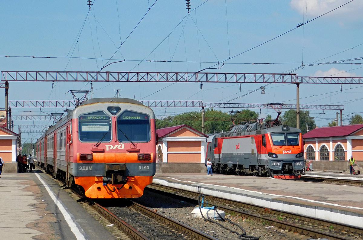Поезд из Брянска в Санкт-Петербург буде курсировать ежедневно с 31 мая