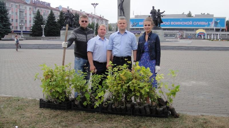 Сотрудники брянской прокуратуры преобразили город саженцами