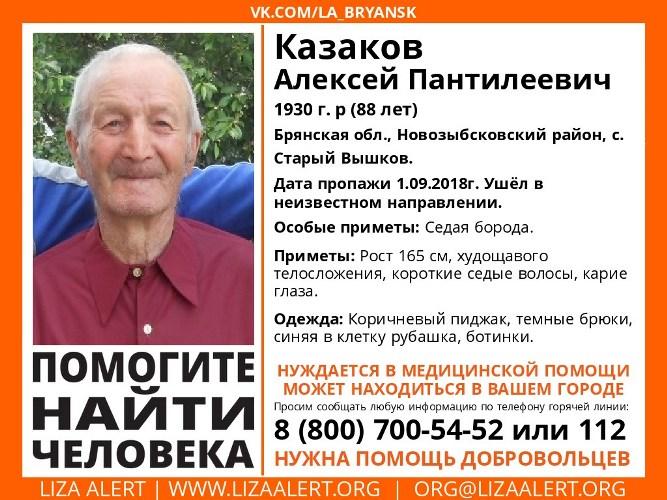 В Брянске пропал 88-летний пенсионер