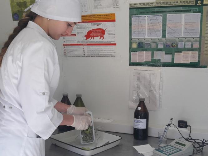 Брянские овощи и фрукты проверили на нитраты