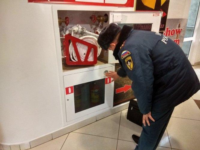 В Брянской области 10 и 11 декабря пройдут массовые проверки водителей