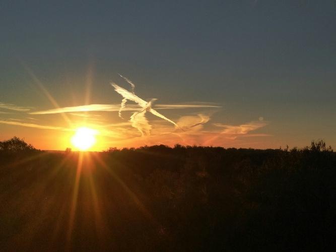В соцсетях восхитились необычными облаками над Брянском