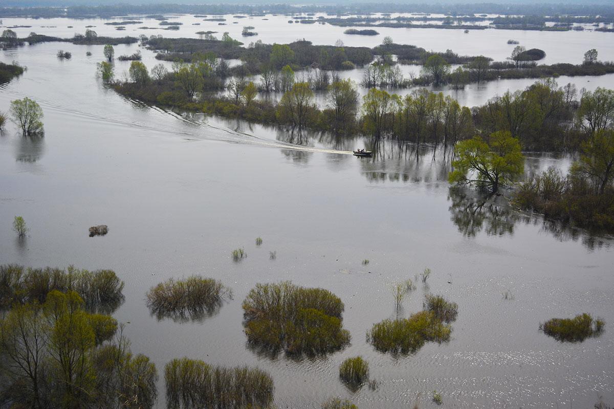 Уровень воды снизился в брянских реках Десне и Болве