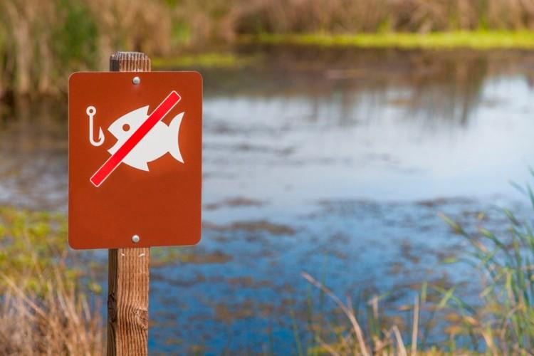 Брянцам с 22 марта запретят ловить рыбу
