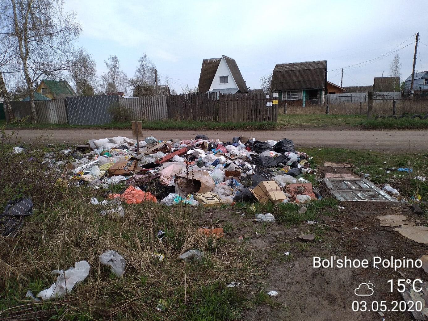 Брянцы жалуются на мусорный апокалипсис в лесу
