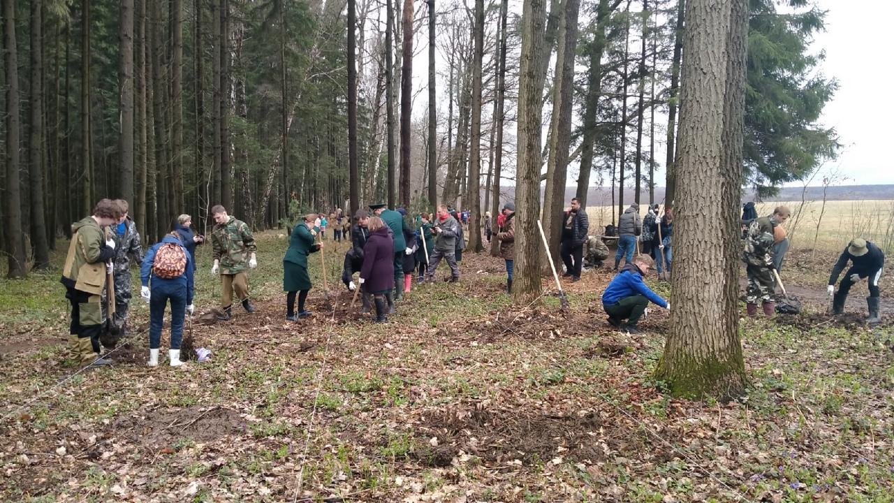 В Клинцовском лесничестве Брянской области заложили сквер в память о погибших воинах