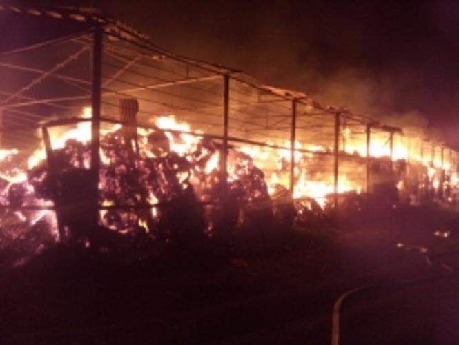 В Рогнединском районе загорелся сенник