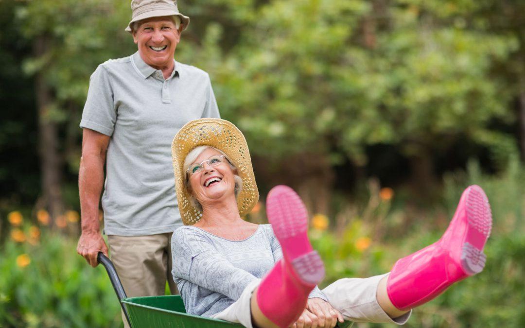 Брянские огородники могут самоизолироваться на дачах
