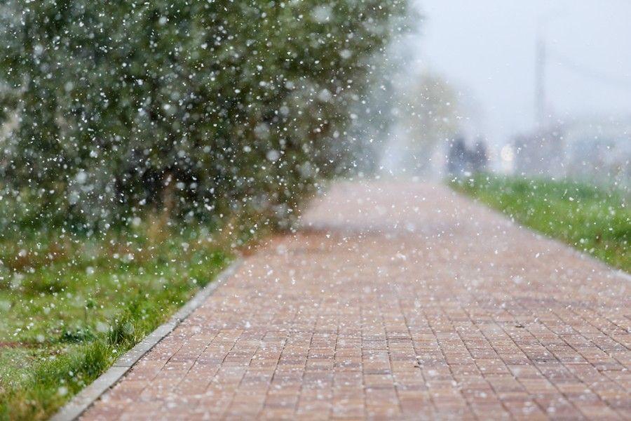 Сегодня в Брянске ожидаются заморозки и мокрый снег