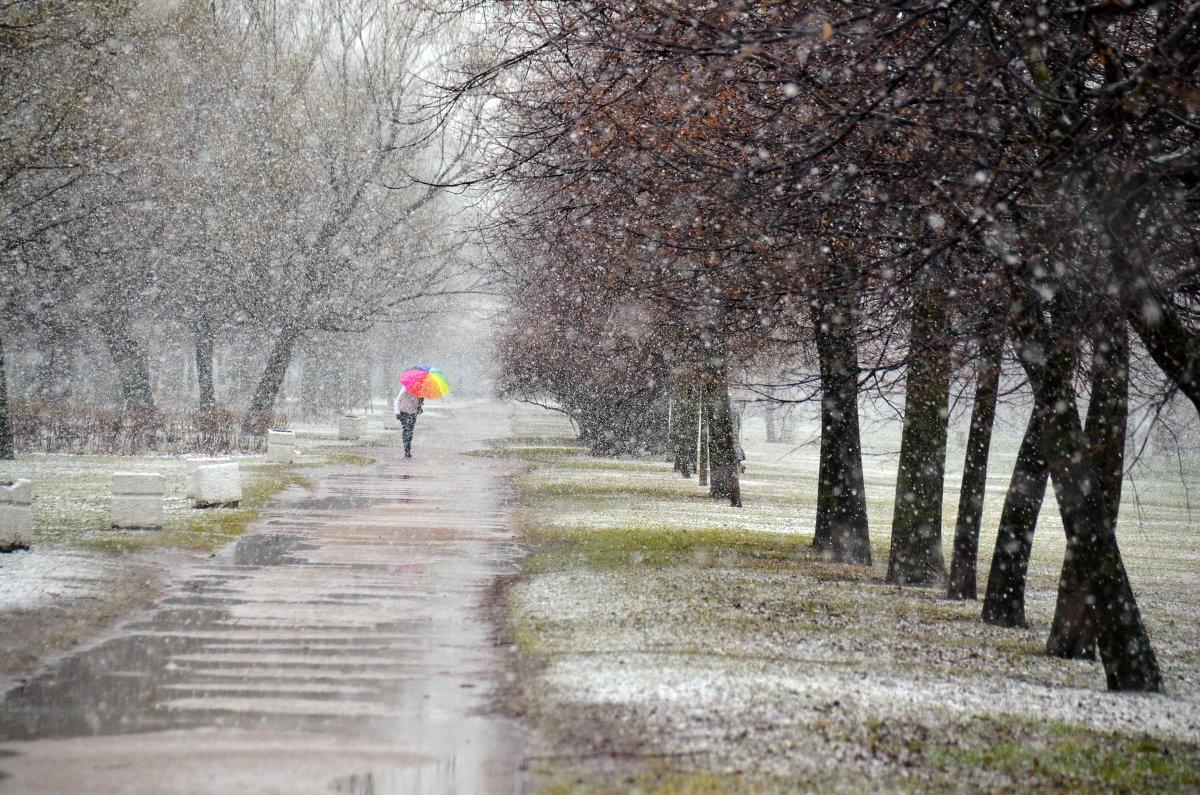 Завтра в Брянской области продолжатся мокрый снег и дождь