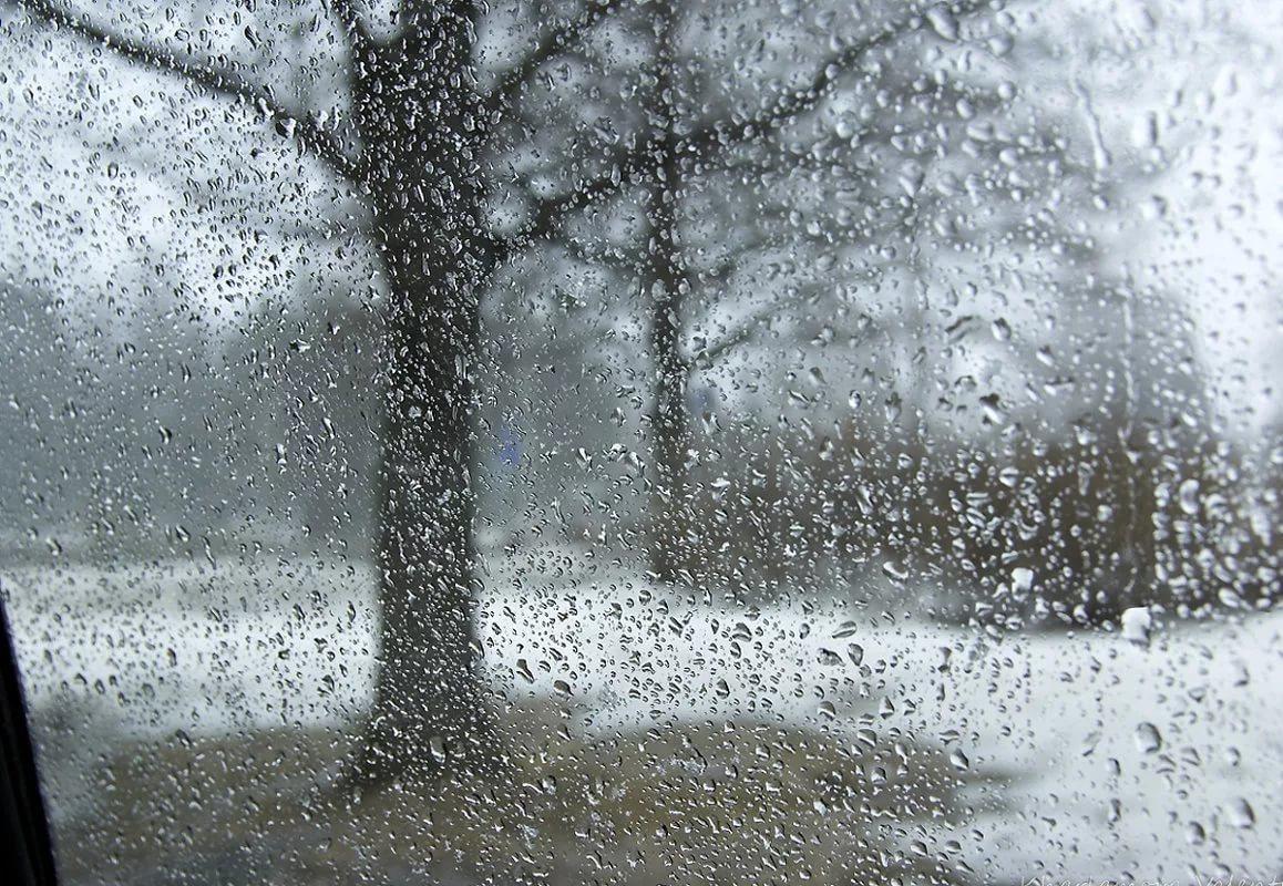 Мокрый снег и дождь в последний вторник апреля пообещали брянцам