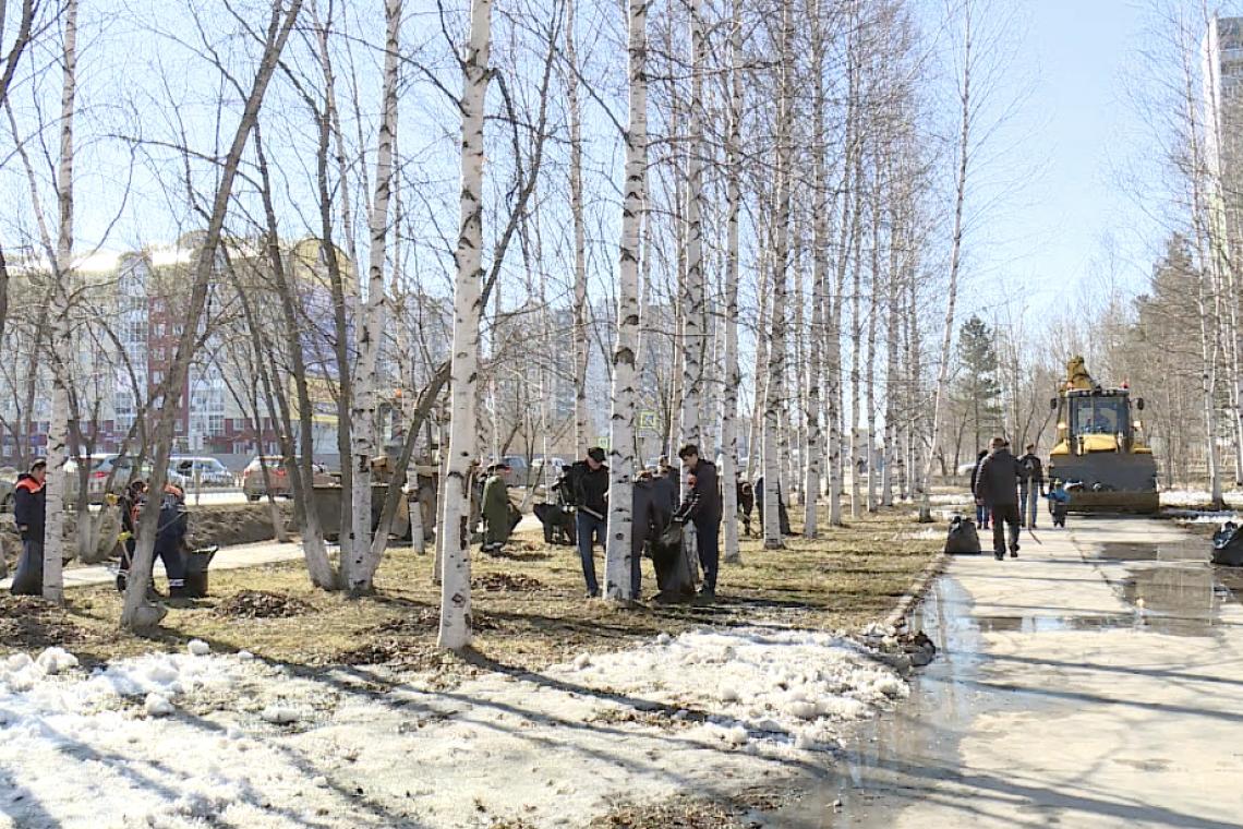 В Брянской области прогнозируют 3 градуса мороза и мокрый снег