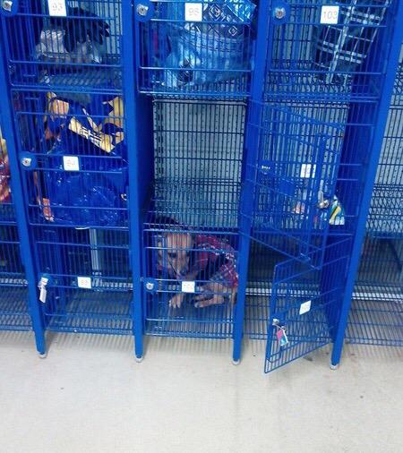 В брянском магазине заперли собаку в камере хранения
