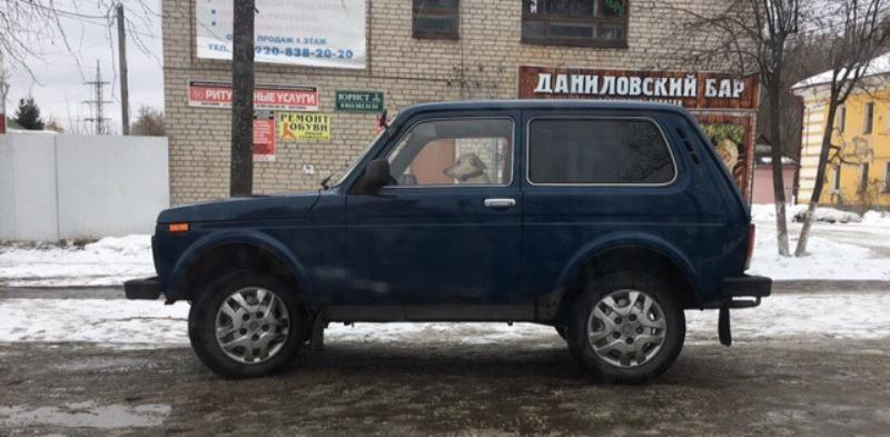 Брянцев удивила собака за рулем легковушки